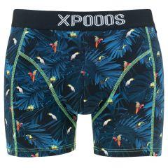 birds boxer blauw